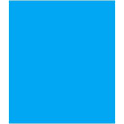 Neurologic and Vestibular PT
